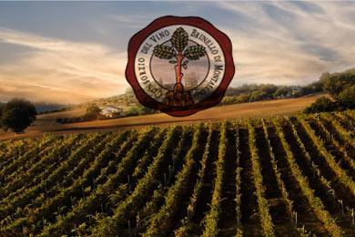 brunello montalcino wine tasting tours best italian wine in tuscany