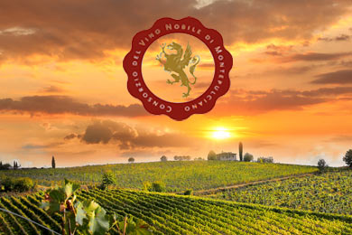 nobile montepulciano wine tasting tours in tuscany