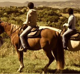 Horseback Riding in Chianti