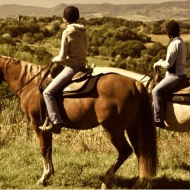 Horseback Riding in Chianti
