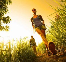 Hiking and Walking in Chianti