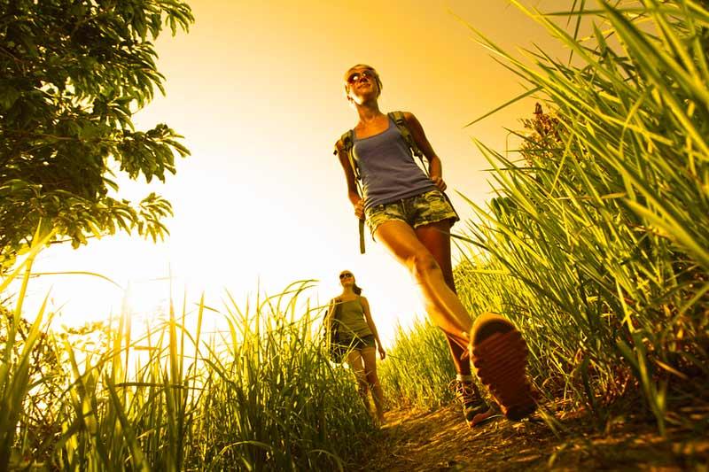 trekking e escursioni nella natura nel chianti tra vigneti e oliveti cantine e aziende vinicole