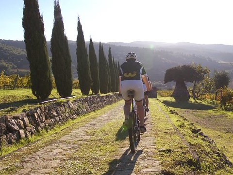 Bike Tour in Tuscany – The Chianti ancient league by bicycles