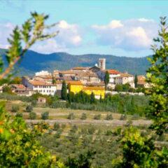 degustazioni guidate di vini nel Chianti e in toscana