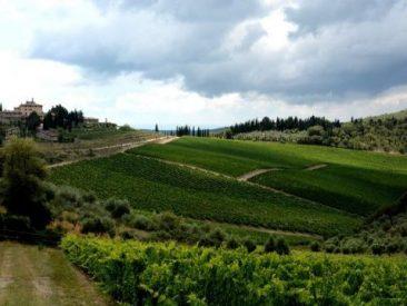 San Donato wine tasting tour in chianti