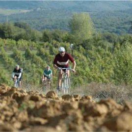 l'eroica, the beast vintage bike race in chianti region