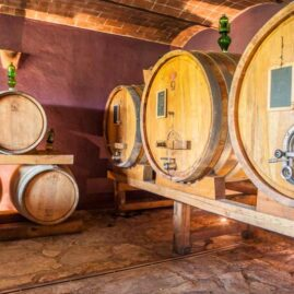 wine tasting tour in chianti classico winery