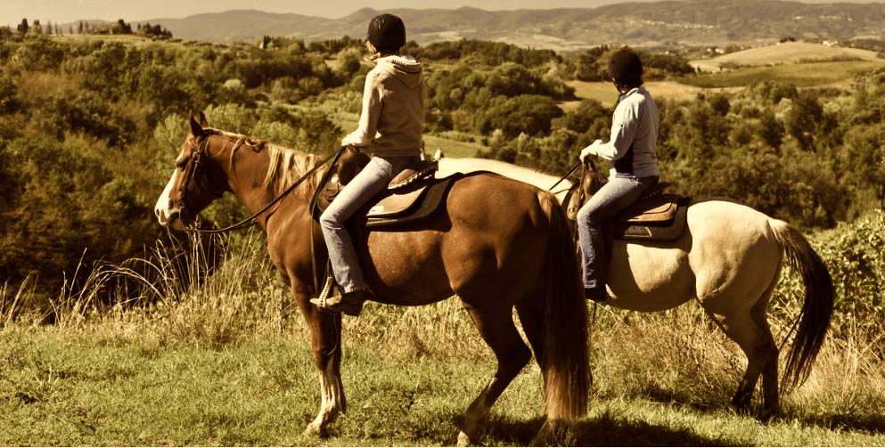 Horseback riding in Chianti and Tuscany wine tour