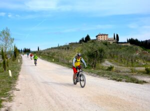 Shared Bike tour in Chianti