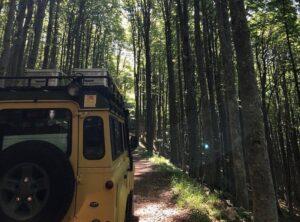 Chianti Classico Rural Safari